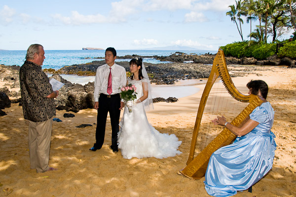 The Harpist Will Play Consistently During Ceremony And Afterward For About An Hour Providing A Ambiance Entire Wedding